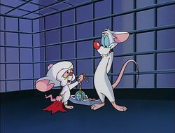 Pinky and Brain exchange gifts