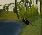 Ape Atoll Agility Course (Rope swing)