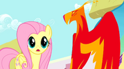 Philomena apologizes to Fluttershy S01E22