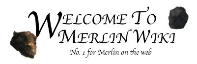Welcome to Merlin Wiki