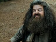 Hagrid
