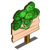 Water Cress Mastery Sign-icon