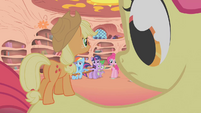 Camera zooms out to show Apple Teeny on Apple Bloom&#39;s back S1E09