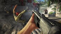 Far Cry 3-21