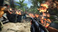 Far Cry 3-20