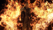 Sephiroth in Flammen