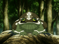 Badgerfrog.png
