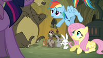 Rainbow Dash &#39;Fluttershy spoke with the woodland critters&#39; S3E03