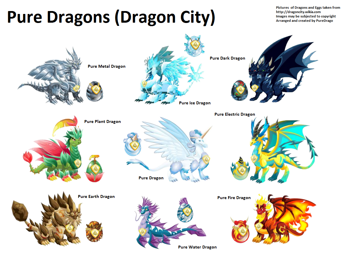 Dragon City Pure Dragon