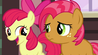 Apple Bloom &#39;And we&#39;ve got a really big surprise&#39; S3E04