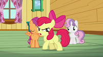Apple Bloom &#39;We&#39;re not gonna be a bunch of tattle-tales!&#39; S3E04