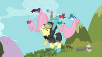 Birds lift Fluttershy to take her to Zecora&#39;s place S3E05