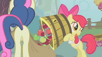 Apple Bloom dumps apples in Sweetie Drops's bag S01E12