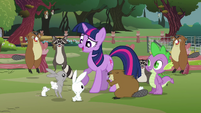 Fluttershy's animals surrounding Twilight S3E05