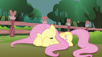 Fluttershy doesn&#39;t want to look S3E05