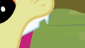 Close-up on Apple Bloom's chipped tooth S2E6.png