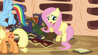 Fluttershy &#39;Yes, but, um, you can&#39;t&#39; S3E05