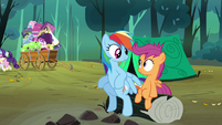 Rainbow Dash &#39;Get along just fine&#39; S3E6