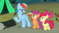 Rainbow Dash 'Can you get us' S3E06