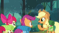 Applejack &#39;Looks like we&#39;re all set then&#39; S3E06