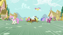 Ponies arguing S3E6