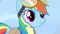 Rainbow Dash blank expression S3E7