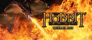The hobbit desolation of smaug poster banner by umbridge1986-d5f8rey