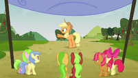 Applejack points at her right S3E08