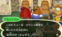 Resetti new leaf