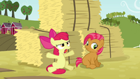 Apple Bloom 'but that was ridiculous!' S3E08