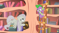 Spike crossed-eyed because Fluttershy threw a scroll at him S2E2