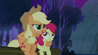 Applejack 'does this pony know where it's goin' S3E06