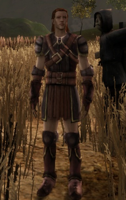 Dalish Leather armor set