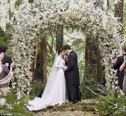 Bella and Edward&#39;s wedding pic 1