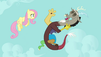 Discord and Fluttershy &quot;you&#39;re hilarious!&quot; S03E10