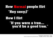 Funny-how-to-flirt-quote