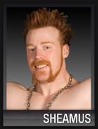 Sheamus20090901crawl