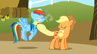 Applejack smacking Rainbow S1E13