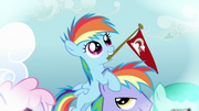 Filly Rainbow Dash on her father&#39;s head S3E12