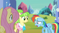 Rainbow Dash out of breath S03E12