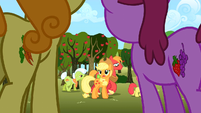 Apple family sad S02E15