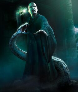 Voldemort-Nagini