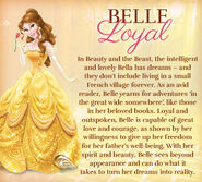 Belle-disney-princess-33526865-441-397