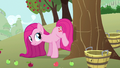 Pinkie Pie has a plan S3E13.png