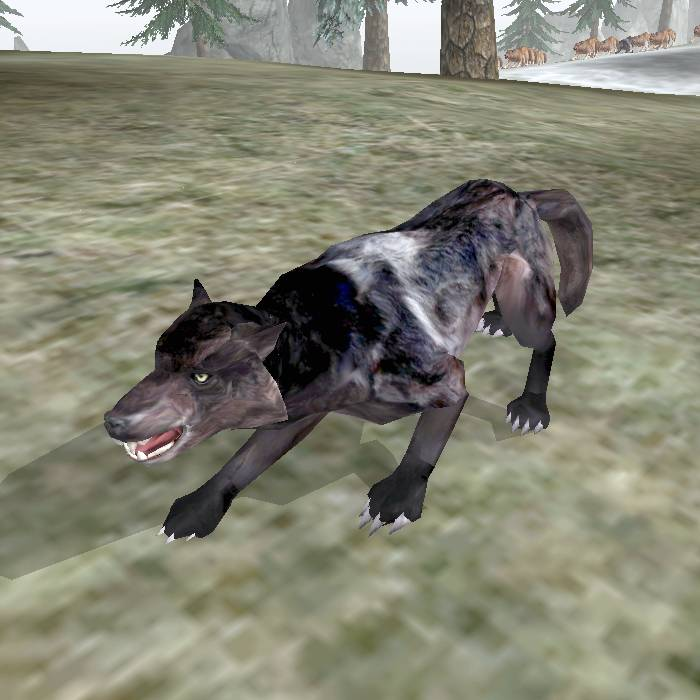 Волк bloodmoon
