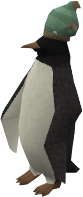 Red Raktuber penguin (blowfish)