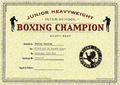 Junior Heavyweight Inter-School Boxing Champion.png