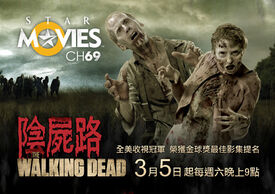 The-Walking-Dead-Season-1-International-Posters-the-walking-dead-23741401-760-535