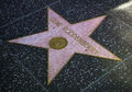 Roddenberry star.jpg