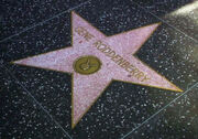 Roddenberry star